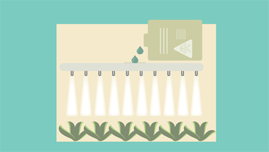 Hogyan kell a totál gyomirtót használni füvesítés előtt?