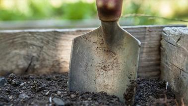Honnan tudhatod, hogy milyen minőségű a talaj kertedben?
