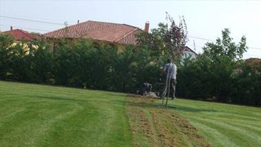 Vége a láblógatásnak: Őszi kertgondozásra fel, íme a recept!